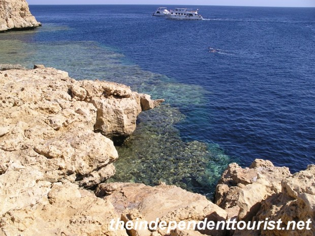 One of the coral walls that goes straight down into the depths at Ras Mohammed National Park.