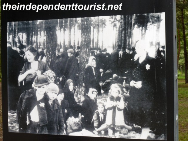 A photo of the victims waiting patiently in the woods for the end.