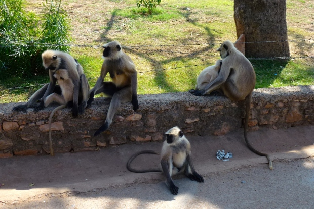 Local residents of Chittorgarh Fortress.