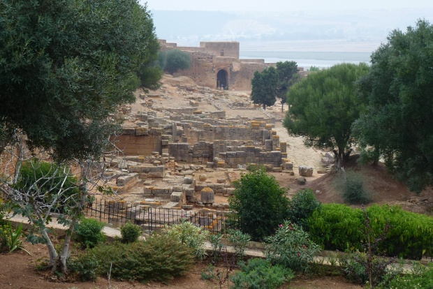 Overlook of the Roman ruins in Chellah.