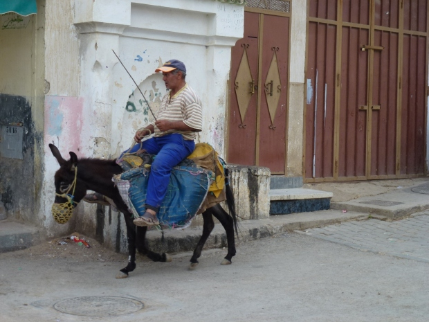 Mules are the means of transportation in this hill top town.