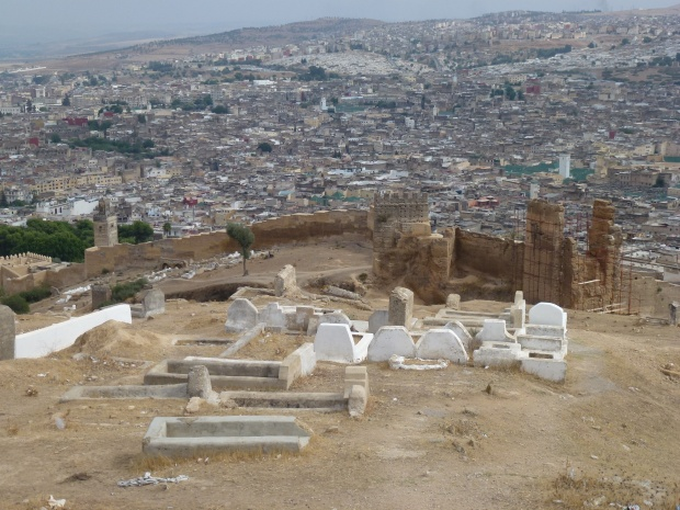 A view of Fez and its old walls from the Merenid Tombs.