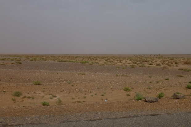 Right before reaching Merzouga the landscape turns pretty bleak.