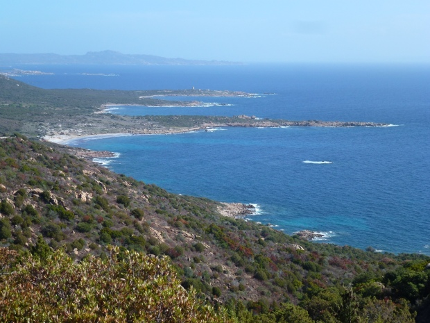 Corsica (11)