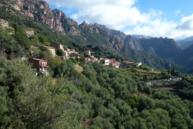 Ota Corsica (2)