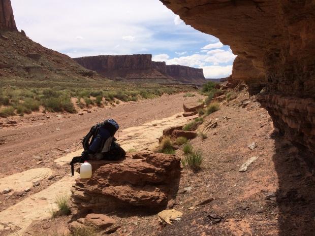 Taylor Canyon Canyonlands