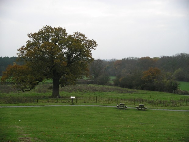 Bosworth Battlefield, England