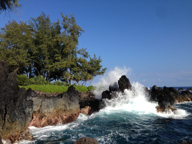 Laupahoehoe Point Beach Park, Hawaii