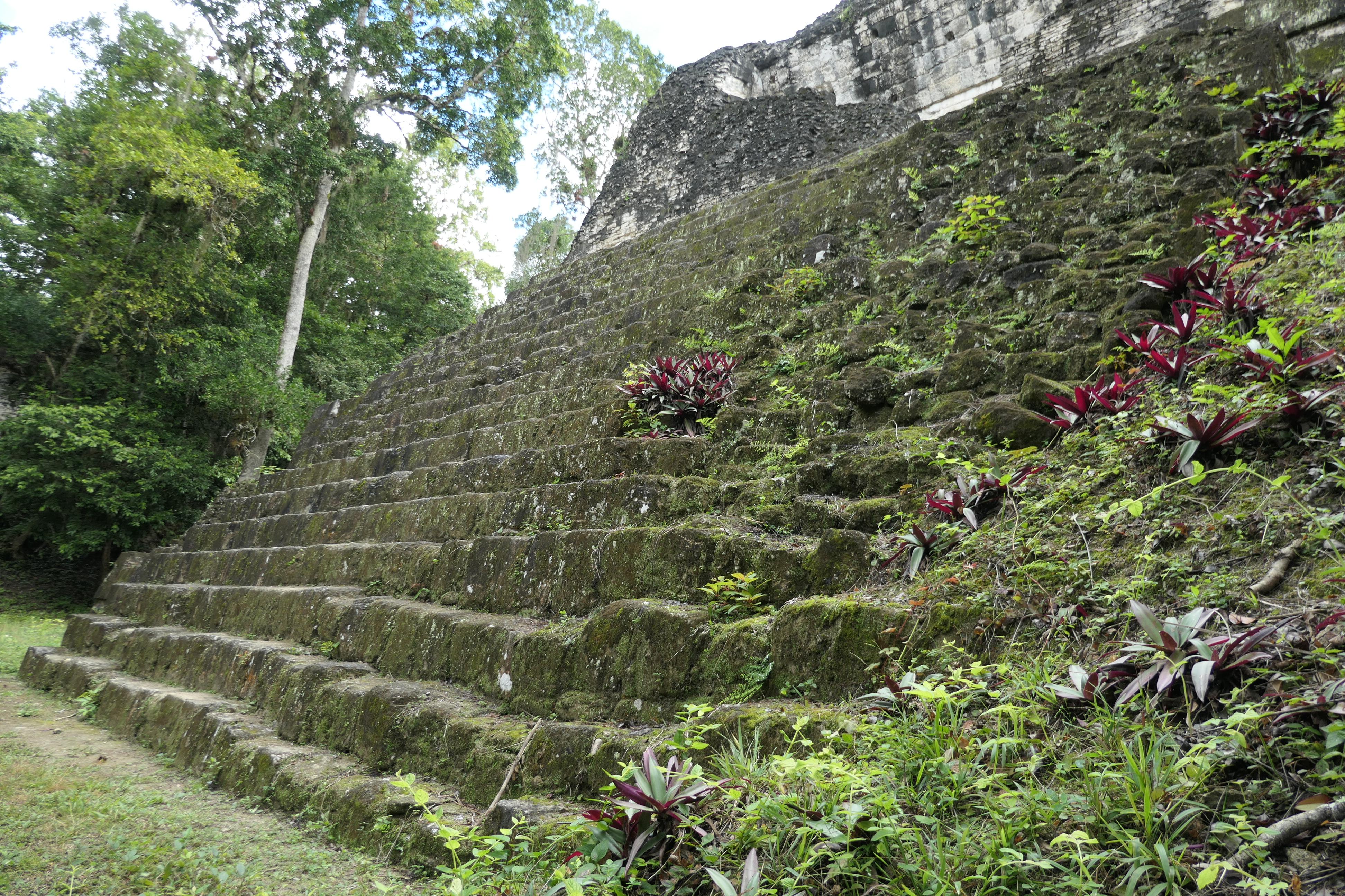 """North Zone, Complex """"P"""", Tikal, Guatemala"""
