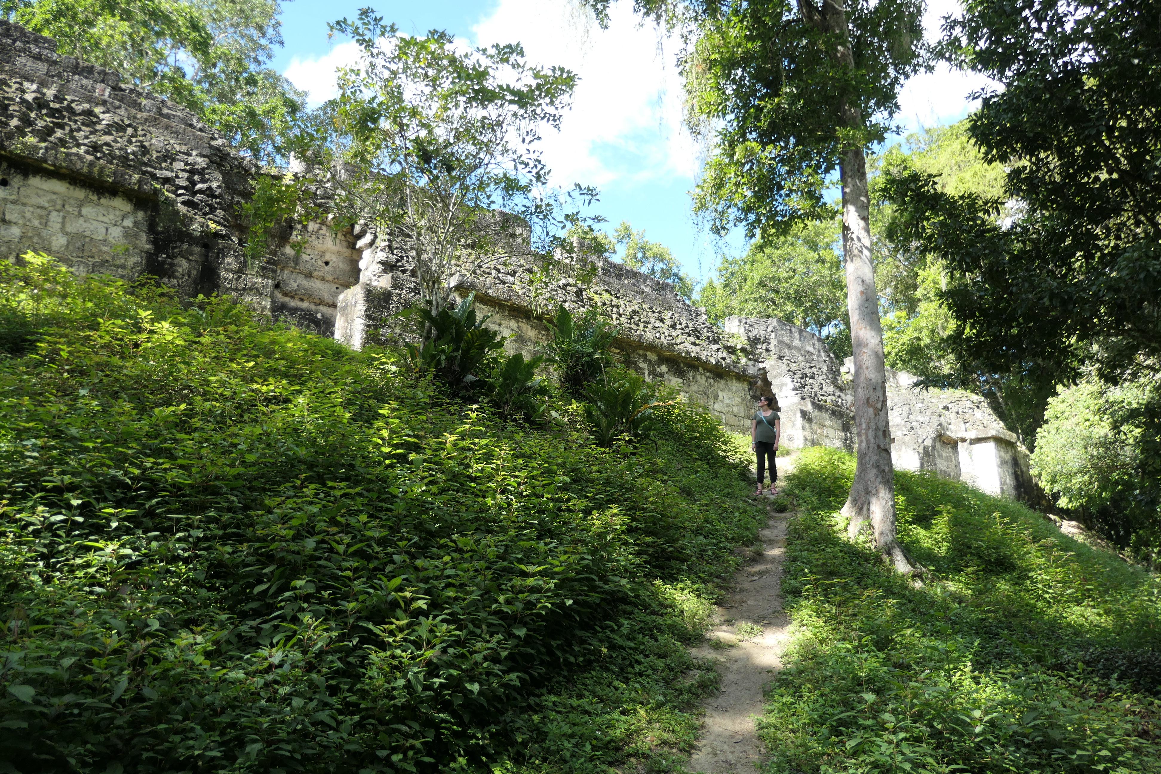 Palacio de las Ventanas, Tikal, Guatemala