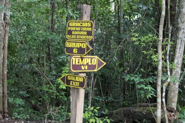Guatemala Tikal Ruins Park 5