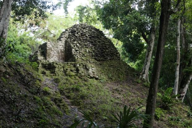 Plaza de los Siete Templos, Tikal, Guatemala